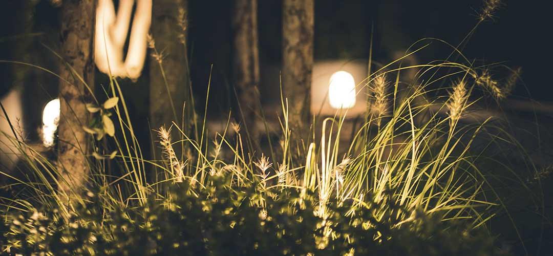 projecteur LED jardin et terrasse